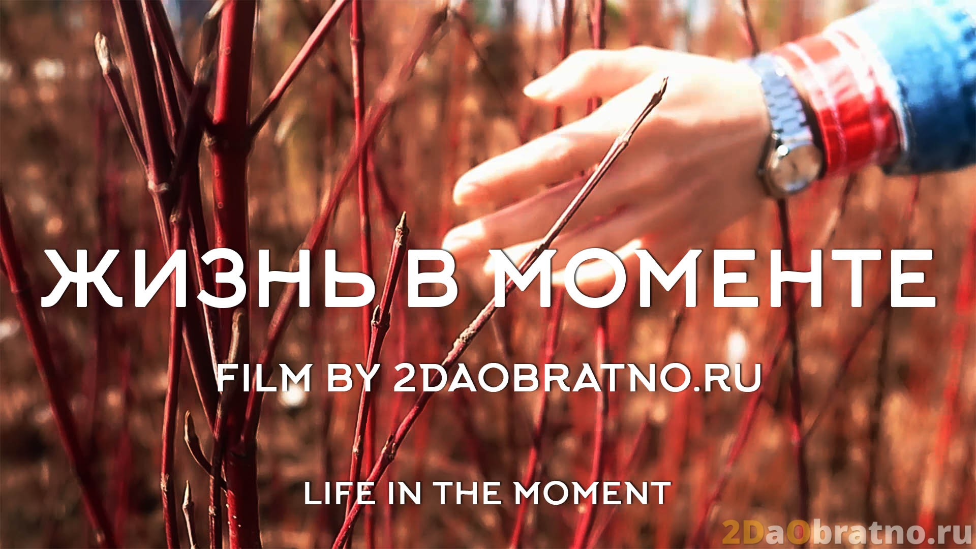 head_life_in_the_moment